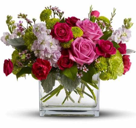 Güzel Insanlara Güzel çiçekler Bodrum çiçekçi Bodrumdaki