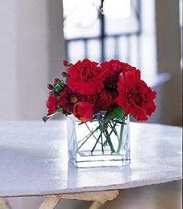 Kırmızı Aşk Camda